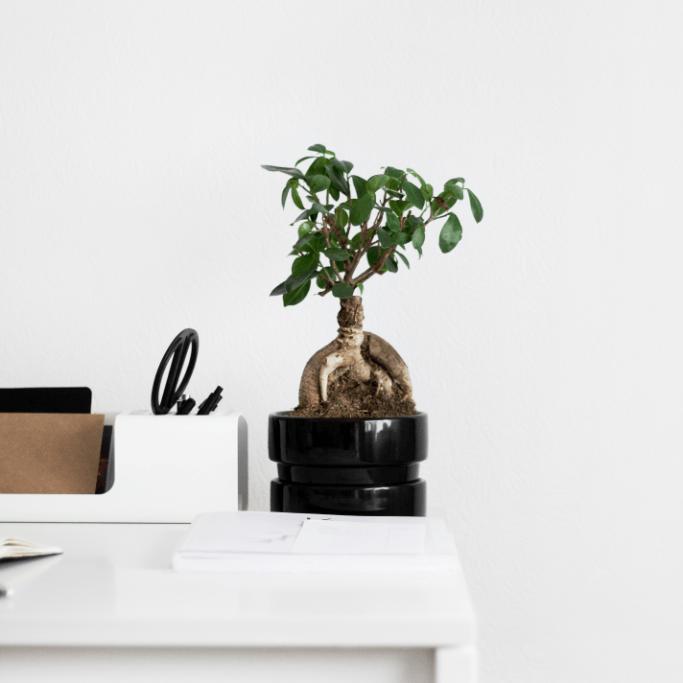 Minimalismus: 4 praktické tipy, jak minimalizovat