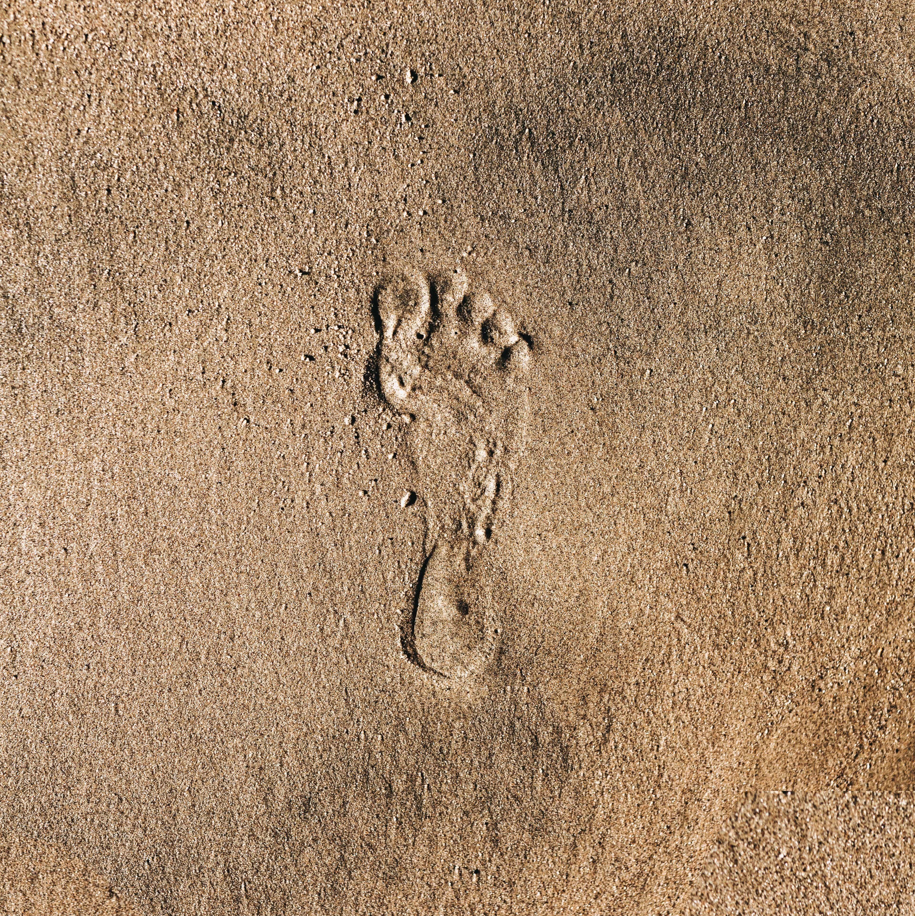Uhlíková stopa.